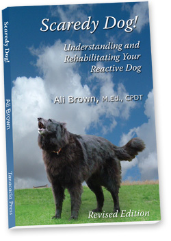 "Picture of Cover of Ali Brown's Book, ""Scaredy Dog!"""