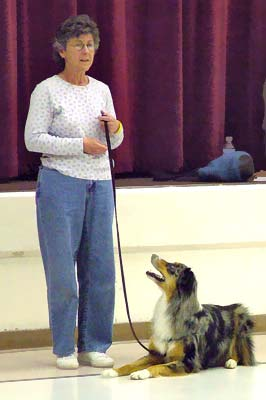 Photo at Ali's Reactive Dog seminar: Dale and Zeke